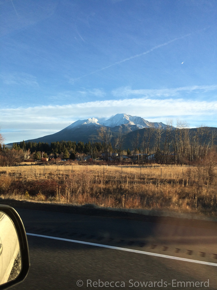 Driving past Mount Shasta we were surprised by the lack of snow. I knew it was a dry year, but I didn't know how dry.