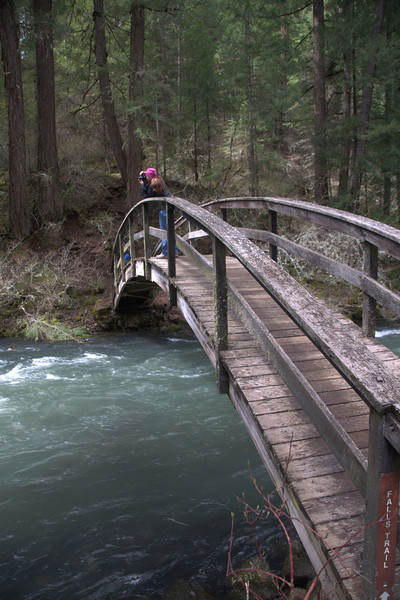 Bridge over the high-running creek