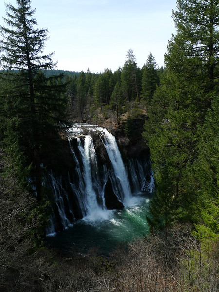 Driving home on Sunday we took the side trip/leg stretch at Burney Falls. Love this place!