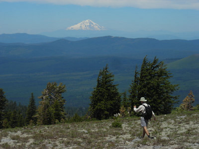 Last views of shasta on the descent.