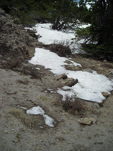 There is still some snow up here at ~8500 feet.