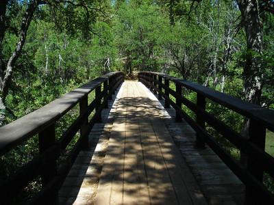 PCT Bridge