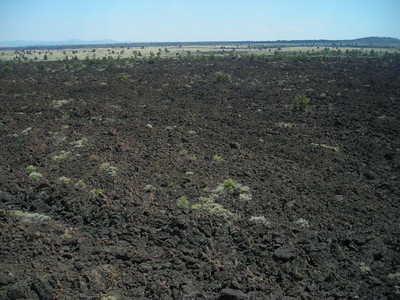 Devil's Homestead lava flow - view to the northeast