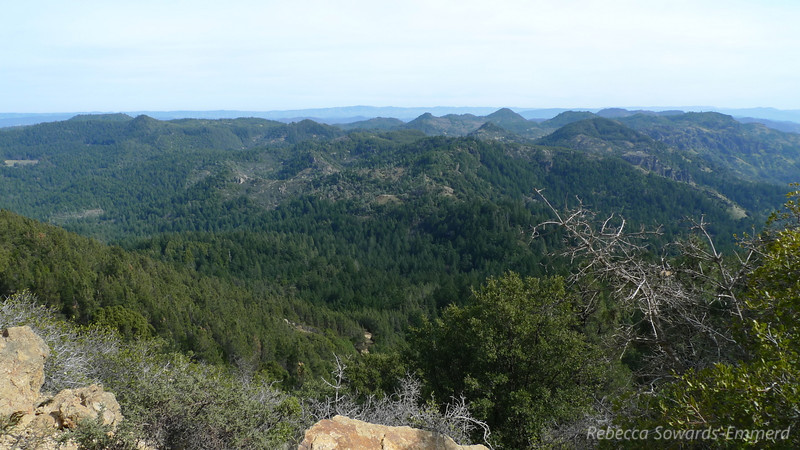 And last of the views. I wish it hadn't been so hazy, but it's still a great hike.