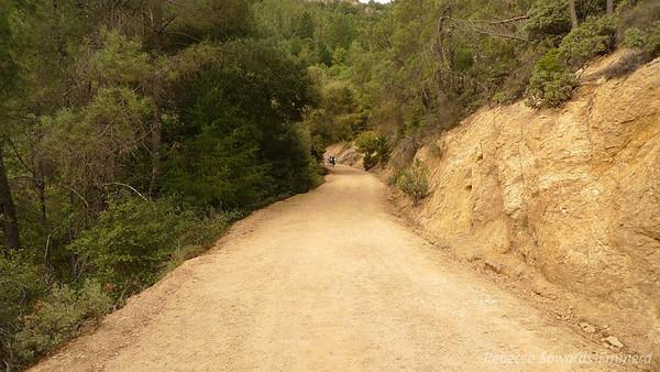 Heading down the 'trail'