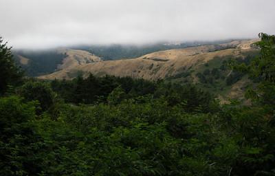 Fog hangs above the hills