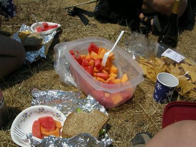 A wonderful picnic lunch - fruit, chips, sandwich, and Graton Ridge Pinot