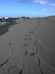 My footprints (I was dragging my trekking poles)