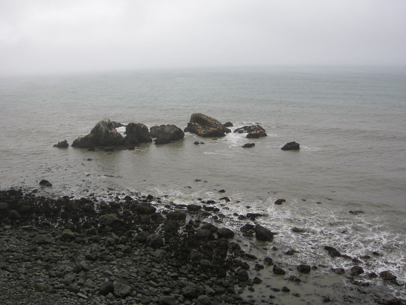 Sea Lion Rock<br /> <br /> We could hear them barking from a mile away