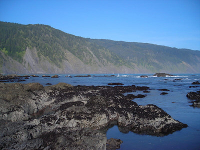Looking south along the Lost Coast from Shelter Cove