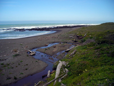 A stream empties into the Pacific
