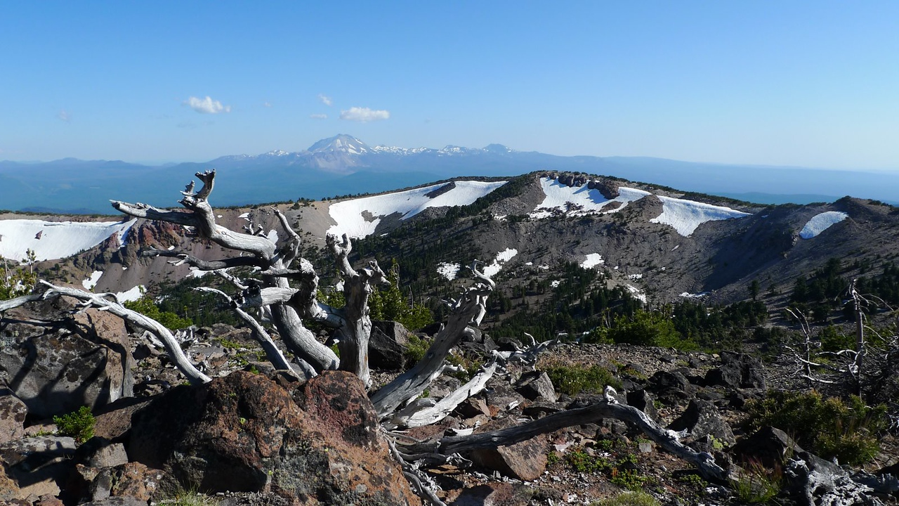 Lassen, the ridge I just came from, and summit tree. (Magee peak is the highest bump)