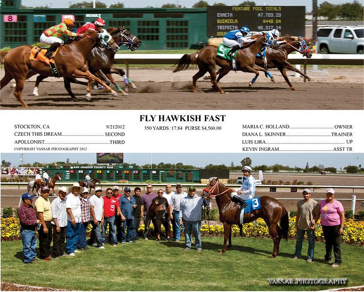 FLY HAWKISH FAST