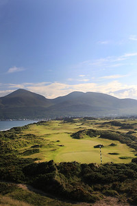 RoyalCountyDown_03BackVert_2016