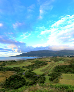 RoyalCountyDown_03BackVert_8168