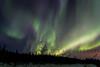 """""""Standing Ovation"""" - Wickersham Dome Aurora - March 16, 2012"""