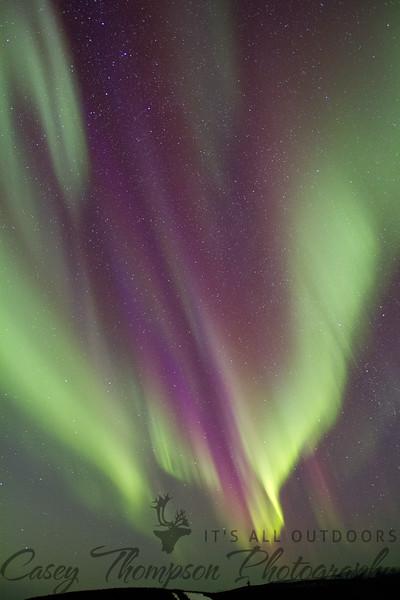 Dancing purple and green Aurora over Moose Mountain in Fairbanks, AK.