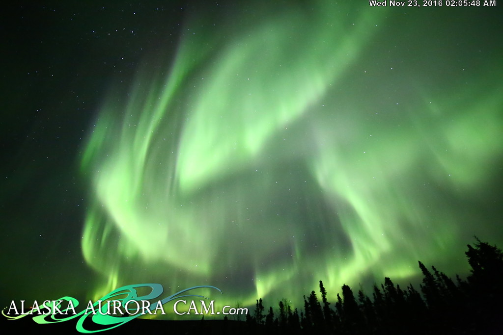 November 22nd  - Alaska Aurora Cam