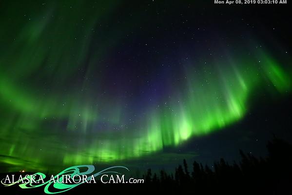 April 7th - Alaska Aurora Cam