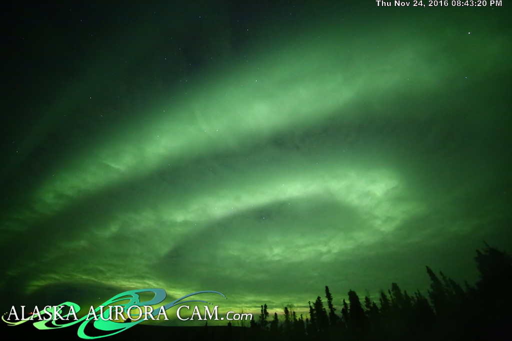 November 24th  - Alaska Aurora Cam