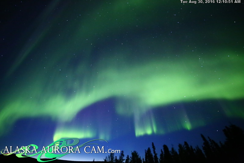 August 29th - Alaska Aurora Cam