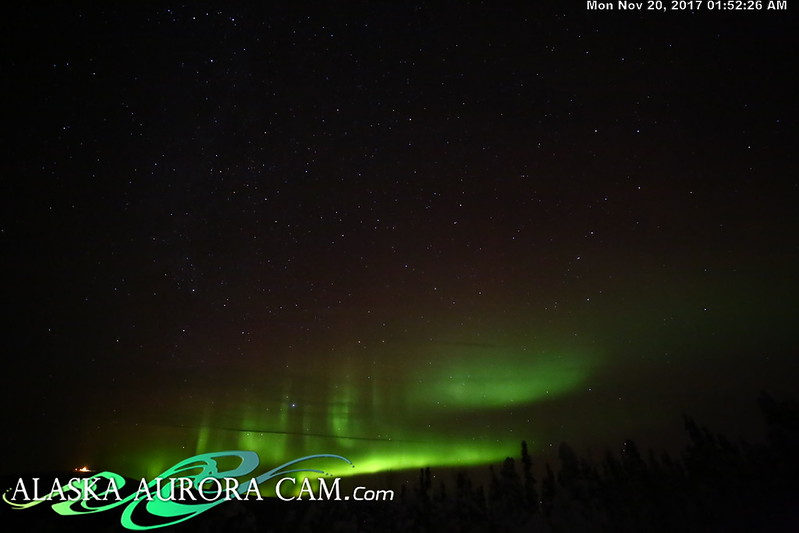 November 19th - Alaska Aurora Cam