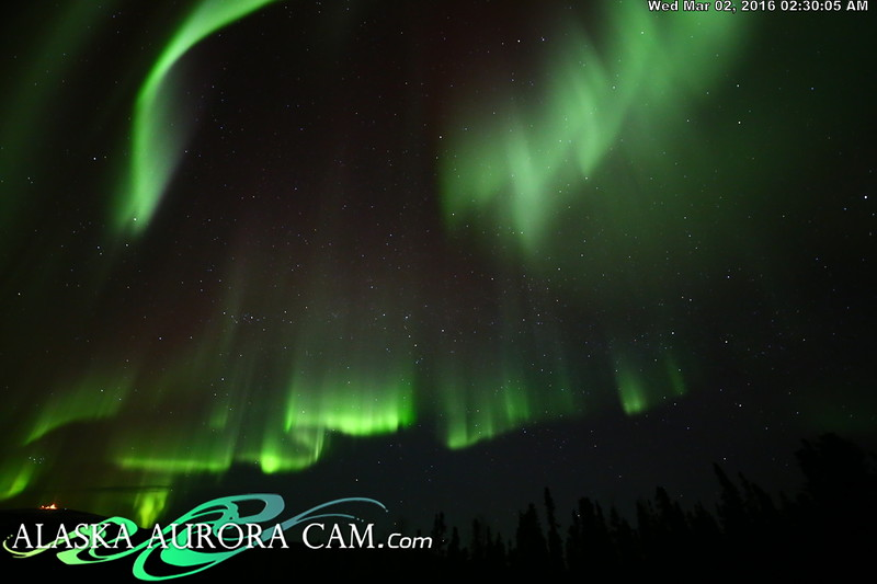 March 1st - Alaska Aurora Cam