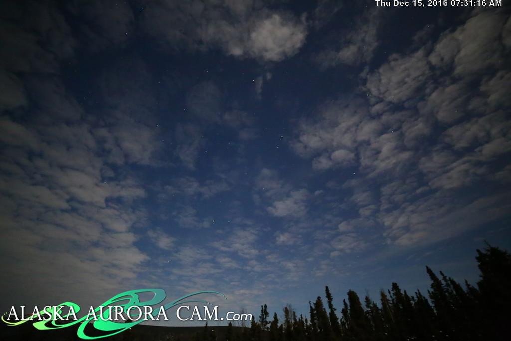 December 14th  - Alaska Aurora Cam