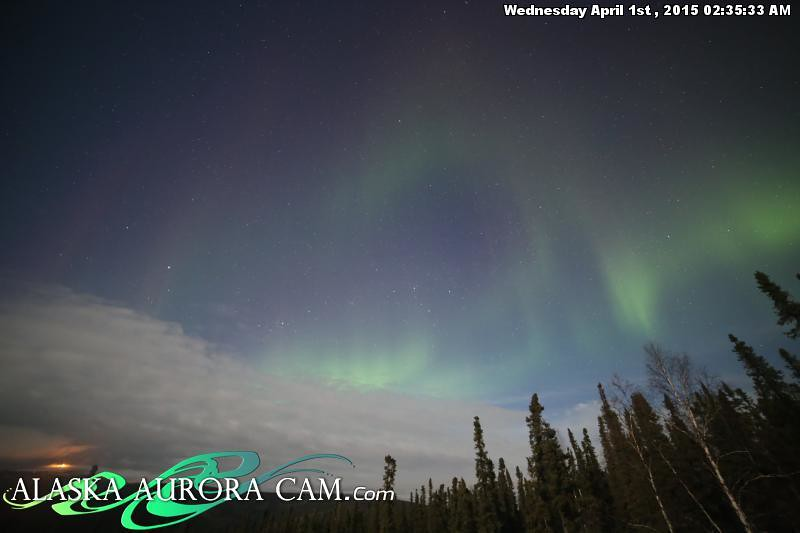 March 31st - Alaska Aurora Cam