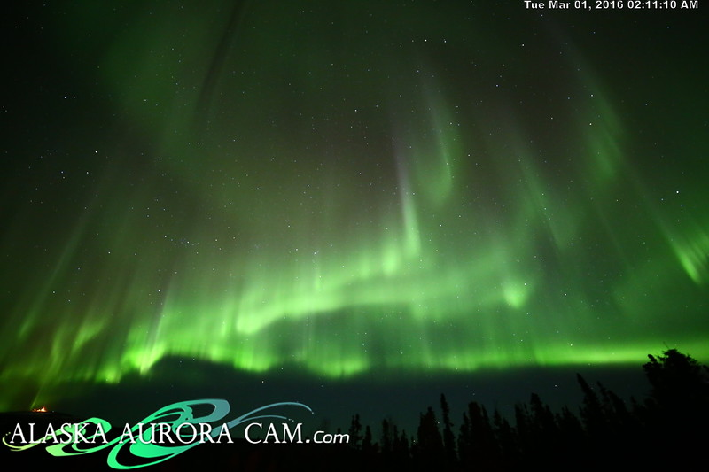 February 29th - Alaska Aurora Cam