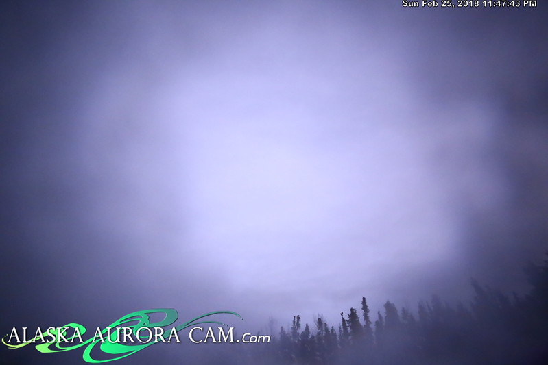 February 25th - Alaska Aurora Cam