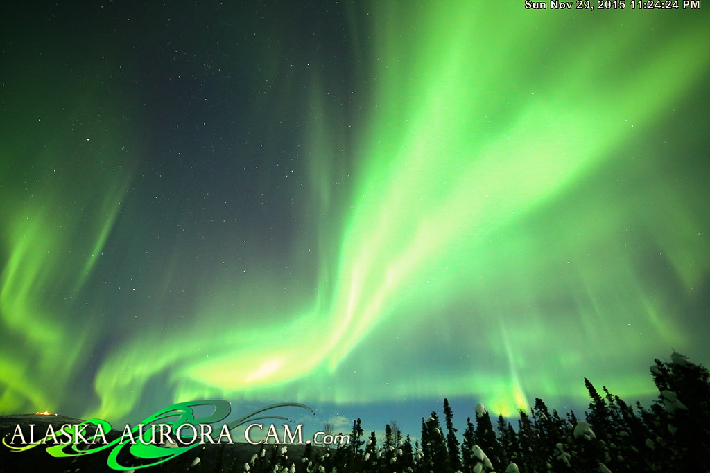 November 29th - Alaska Aurora Cam