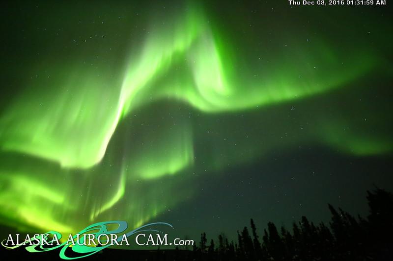 December 7th  - Alaska Aurora Cam