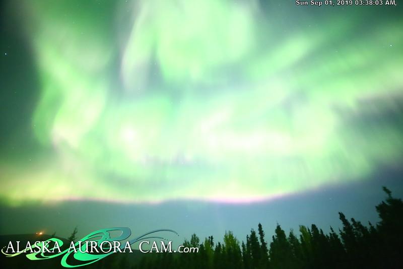 August 31st - Alaska Aurora Cam