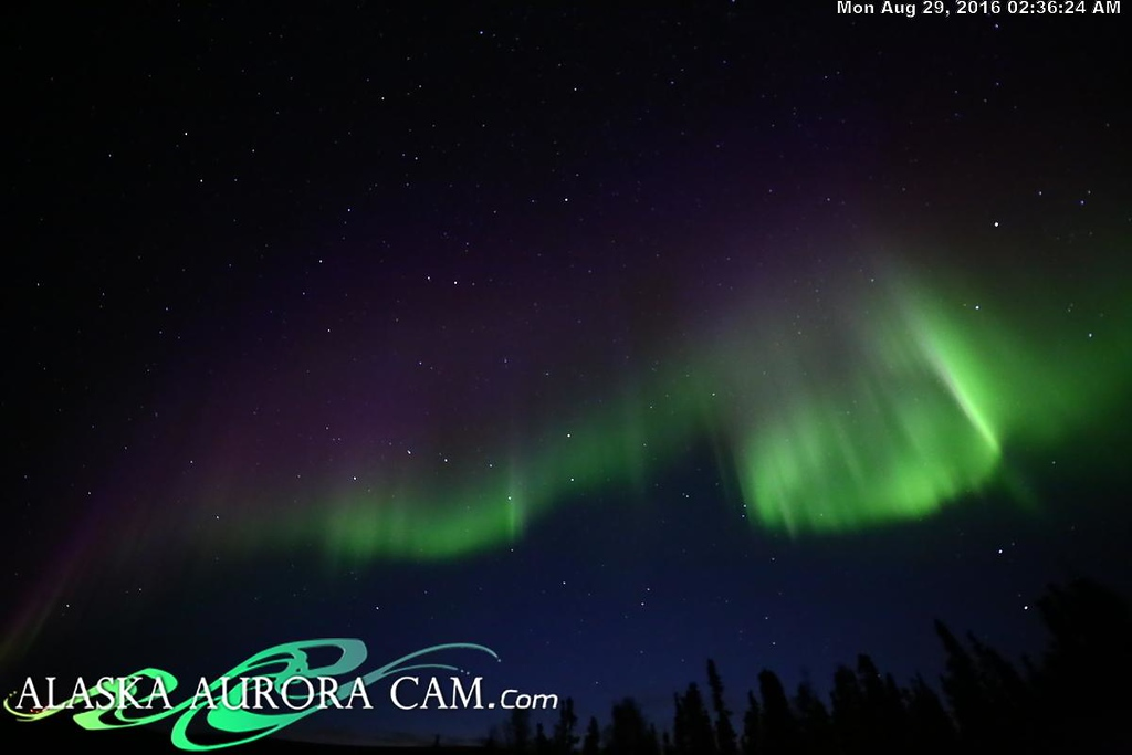 August 28th - Alaska Aurora Cam