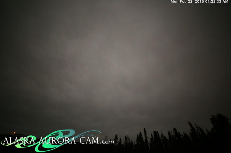 February 21st - Alaska Aurora Cam