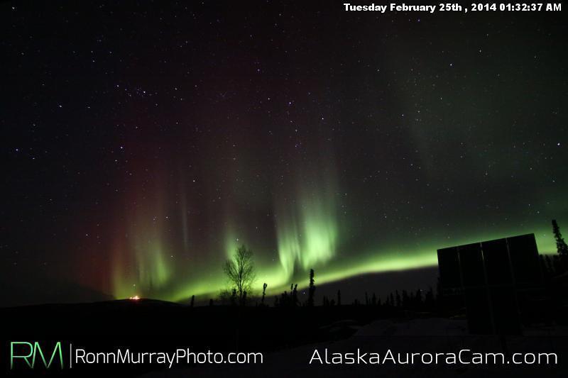 February 25th - Alaska Aurora Cam