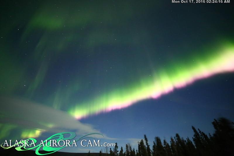 October 16th - Alaska Aurora Cam