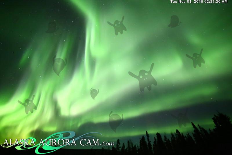 October 31th  - Alaska Aurora Cam