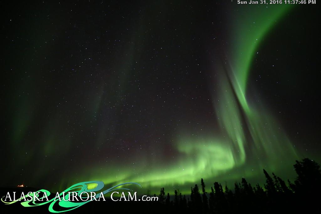 January 31st  - Alaska Aurora Cam