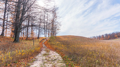 Autumn Trail: Suttons Bay, Michigan