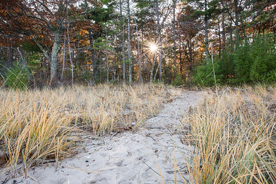 Late Autumn beach trail: Glen Arbor, Michigan
