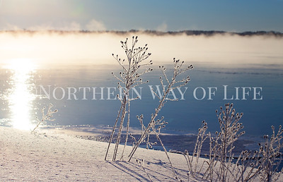 Hoar frost and lake smoke: Suttons Bay, Michigan