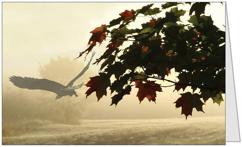 "Frosty Fall Flight <form target=""paypal"" action=""https://www.paypal.com/cgi-bin/webscr"" method=""post""> <input type=""hidden"" name=""cmd"" value=""_s-xclick""> <input type=""hidden"" name=""hosted_button_id"" value=""VMEBXANEBR5PC""> <input type=""image"" src=""https://www.paypal.com/en_US/i/btn/btn_cart_SM.gif"" border=""0"" name=""submit"" alt=""PayPal - The safer, easier way to pay online!""> <img alt="""" border=""0"" src=""https://www.paypal.com/en_US/i/scr/pixel.gif"" width=""1"" height=""1""> </form>"