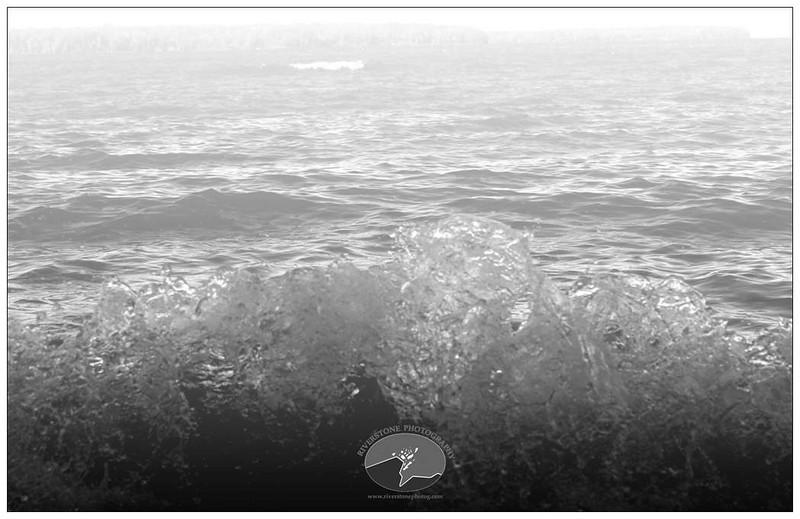 Beach-Bear-Track-Inside