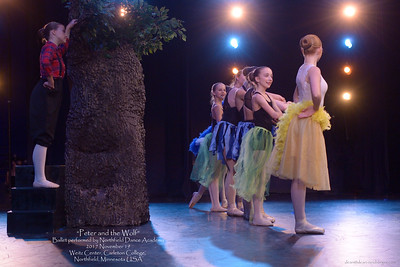 >>Peter and the Wolf<< by Northfield Dance Academy, 2017 November 19 Sunday, Weitz Center, Carleton College, Northfield, Minnesota  USA.