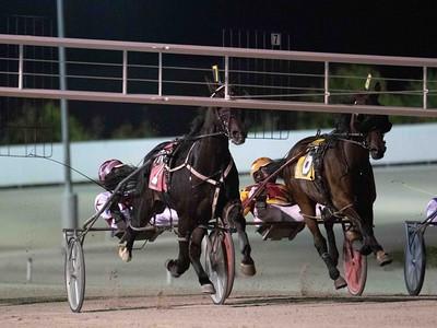 Big Money Mike, Rose Run Warner