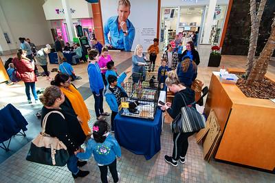 CMPD Pet Adoption @ Northlake Mall  11-3-18 by Jon Strayhorn