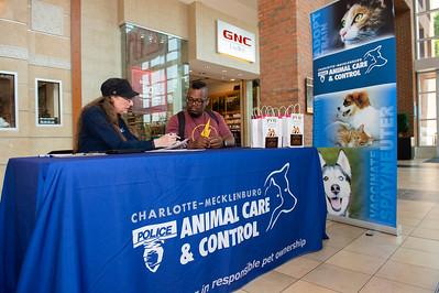 Northlake Mall CMPD Pet Adoption 6-29-19 by Jon Strayhorn