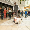 Santa Paws @ Northlake Mall 11-19-17 by Jon Strayhorn